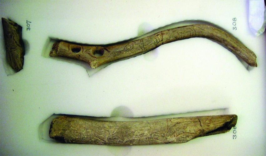 1 ergaleia